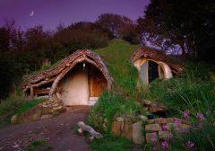 eco shelter